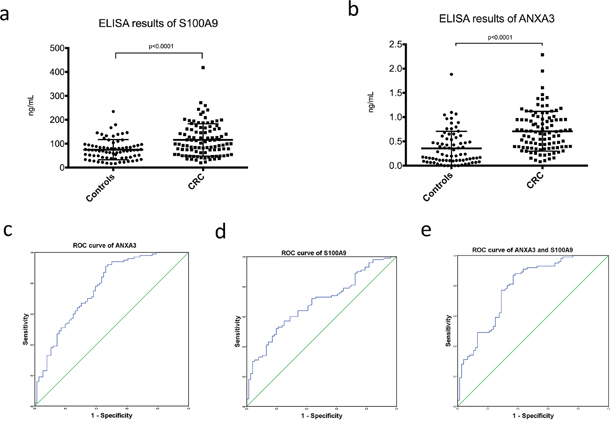 Serum ELISA results of S100A9 and ANXA3 in CRC patients and healthy controls.