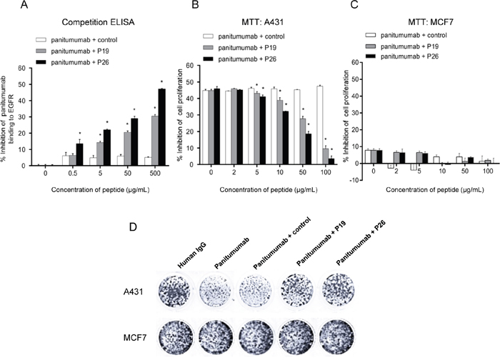 Peptides P19 and P26 inhibited the function of panitumumab.
