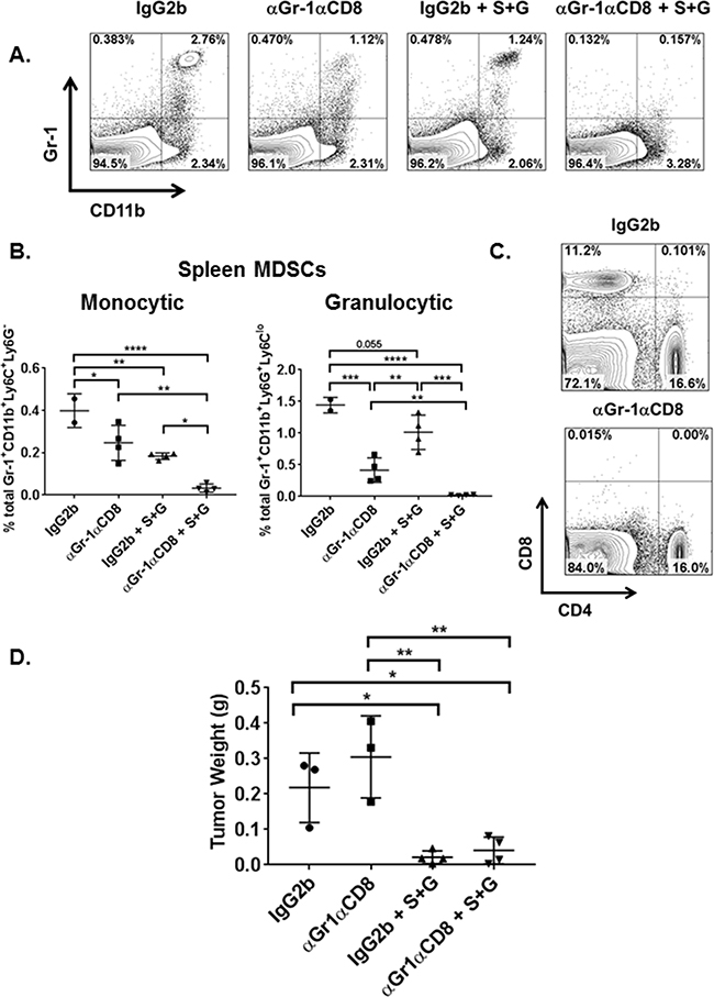 Both combination therapy and MDSC depletion reduce overall tumor burden and splenic MDSC subsets.