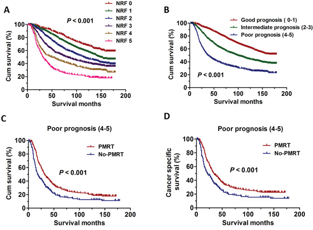 The survival curves in breast cancer patients according to different NRF scoring between 1998 and 2001.