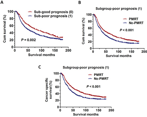 The survival curves in breast cancer patients according to different sub-groups NRF scoring between 1998 and 2001.