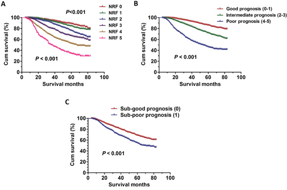 The survival curves in breast cancer patients according to different NRF scoring between 2006 and 2009.