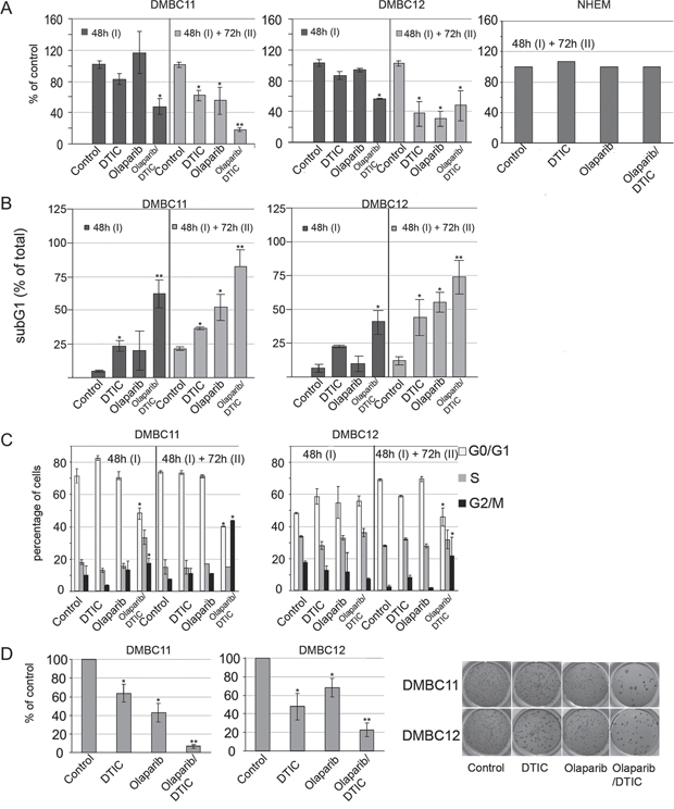 Effects of olaparib and DTIC, used alone or in combination, on viability, distribution in cell cycle and clonogenicity of melanoma cells.