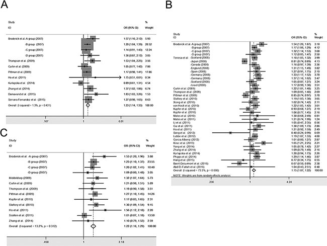 Forest plot of cancer risk associated with the SMAD7 polymorphisms in colorectal cancer studies with recessive genetic models.