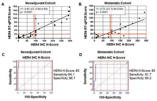 Correlation of HER4 (E200) IHC H-Score to