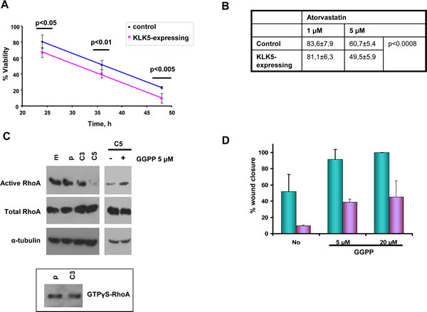 KLK5 may suppress malignancy by inhibiting RhoA signaling and EMTs.