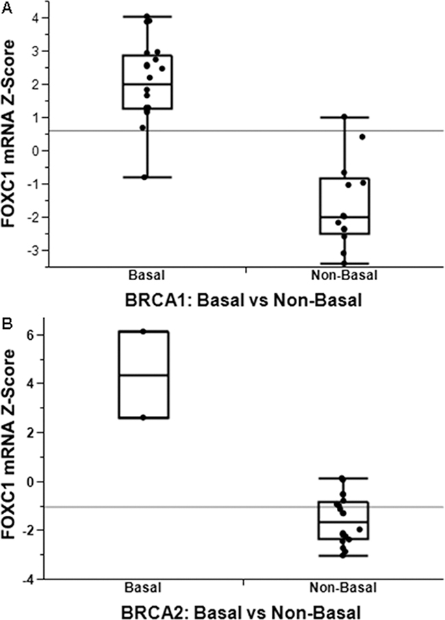 FOXC1 associated with BLBC with functional significance.
