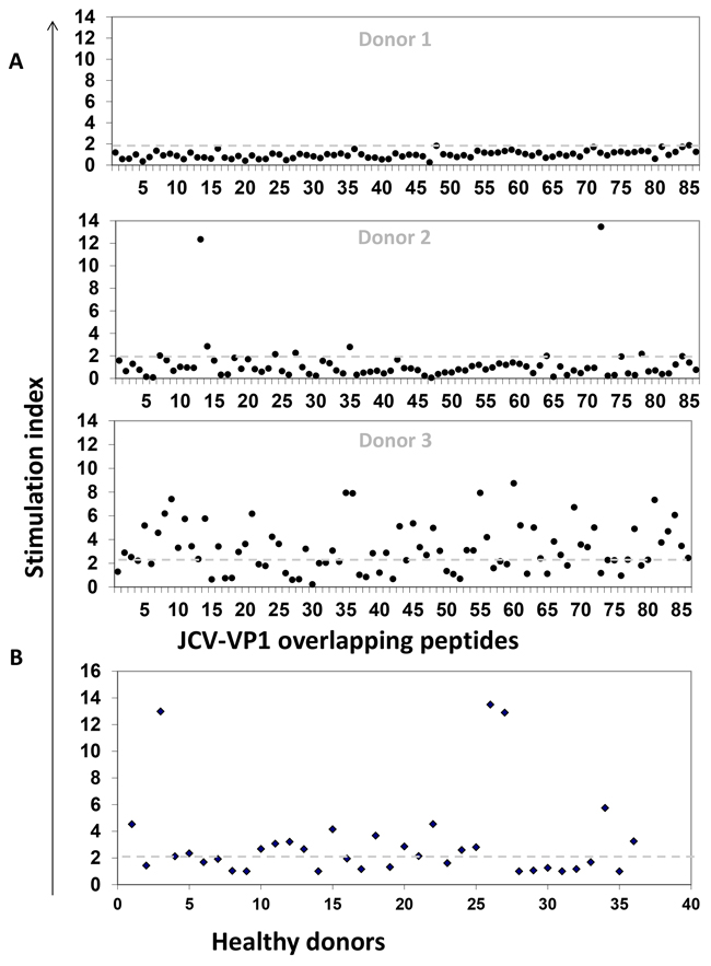 JCV-specific T cell responses of healthy donors.