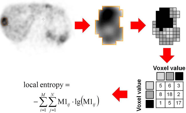 Figure 3.2: Schematic example of Entropy assessment as one of the heterogeneity parameters.
