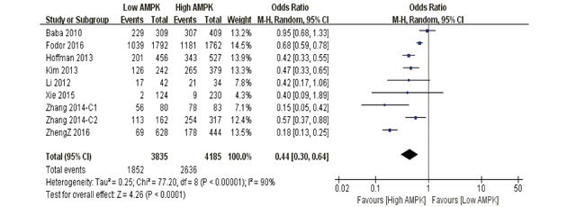 The correlation between AMPK expression levels and 10-year overall survival among cancer patients.