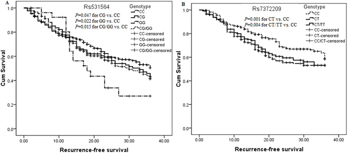 Kaplan-Meier curve analysis of the significant association between pre-miR-124-1 rs531564, pre-miR-26a-1 rs7372209 and RFS in surgically resected CRC patients.