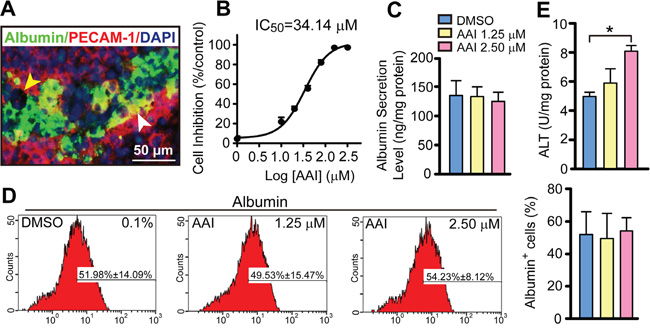 Quantitative evaluation of biological features in the liver-like tissue derived from ES cells with or without AAI exposure.