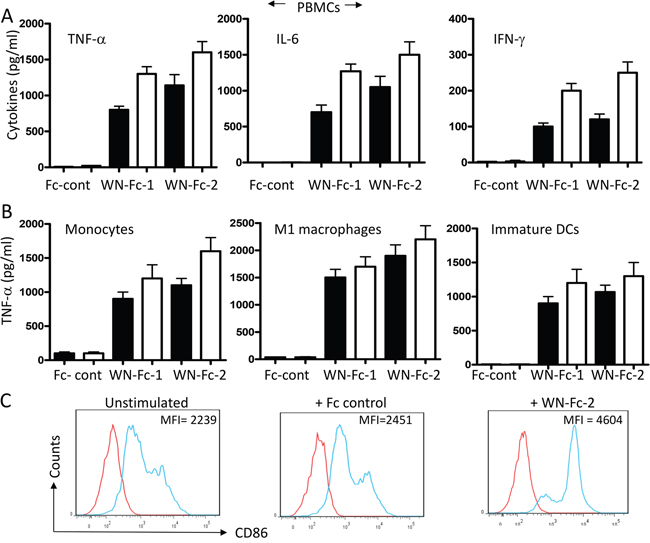 Activation of blood cells in response to soluble WN-Fc-1 and WN-Fc-2.