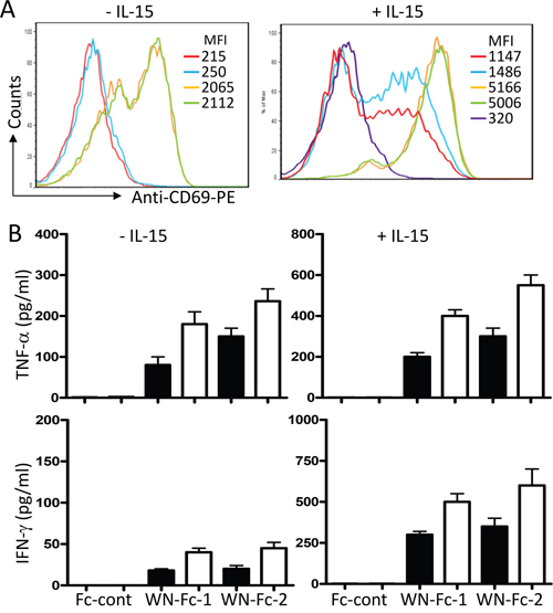 Activation of NK cells in response to WN-Fc-1 and WN-Fc-2.