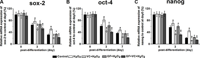 Sox-2 (A), oct-4 (B) and nanog (C) mRNA expressions of the MSCs in the five experimental groups during differentiation.