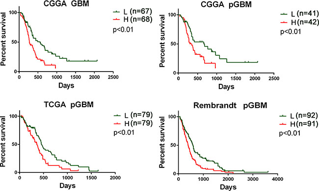 Prognostic values of three ion channel genes-based signature for patients in training and validation datasets.