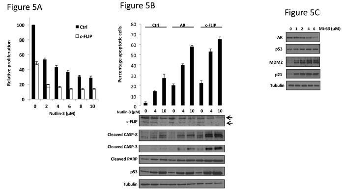 c-FLIP knockdown potentiates apoptosis in response to Nutlin-3.
