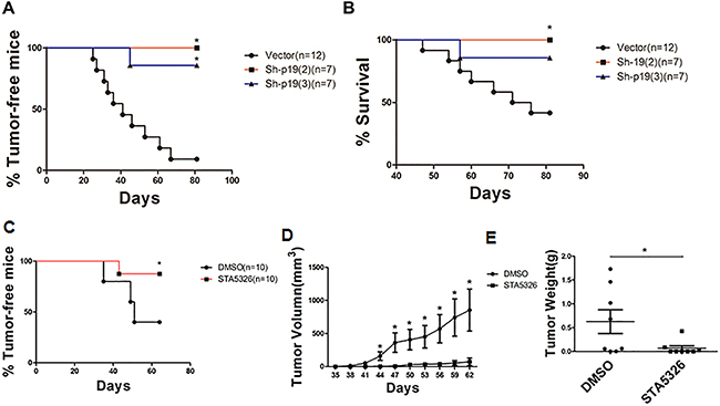IL-23 mediates the growth of ovarian cancer xenografts in vivo.