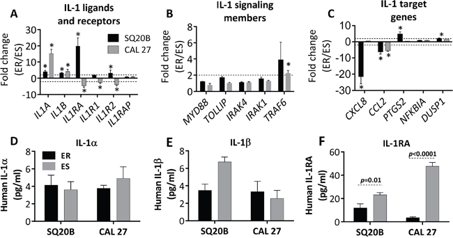 Validation of select IL-1 pathway genes in erlotinib resistant (ER) vs. erlotinib sensitive (ES) HNSCC cells.
