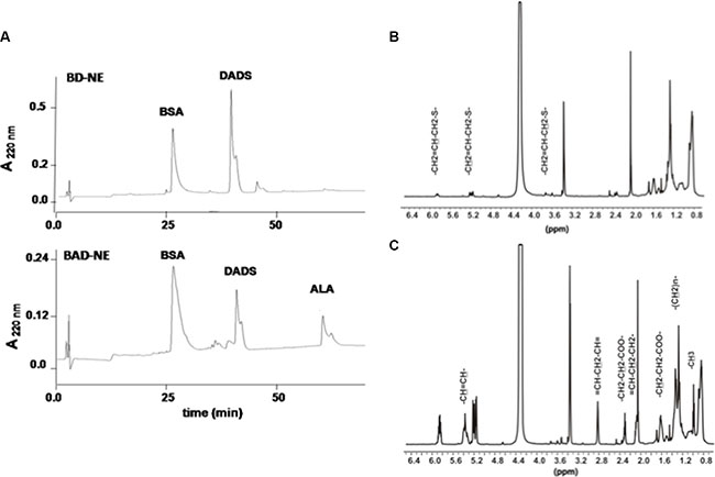Chemical characterization of NEs.