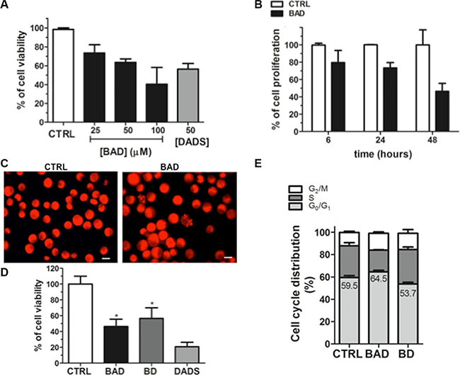 Effects of BAD-NE on cell viability of MCF-7 cancer cell line.
