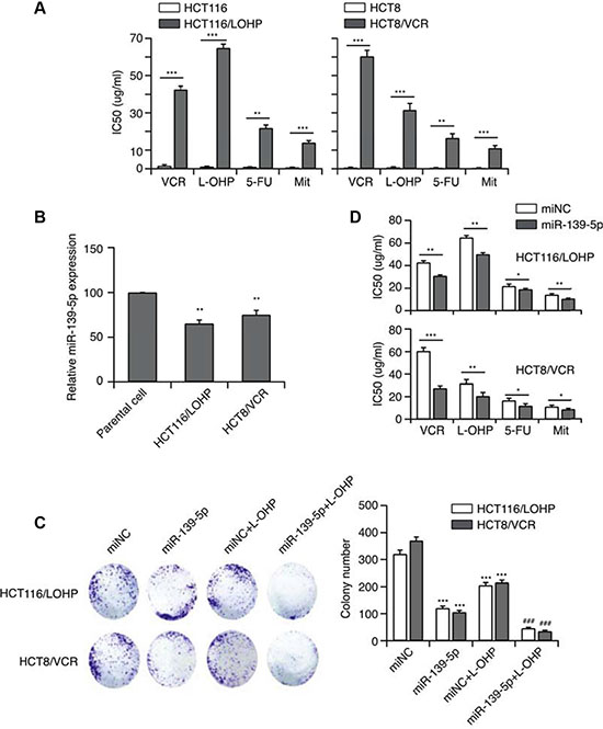 MiR-139-5p function is associated with MDR.