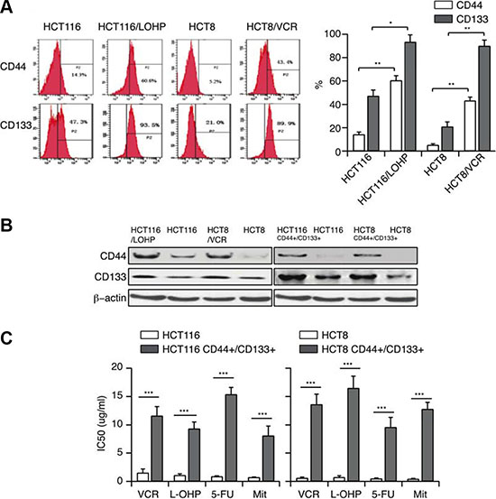 MDR correlates with CSC properties (A, B) CD44 and CD133 expression in HCT116/LOHP and HCT8/VCR cells were determined by flow cytometry and Western blotting.