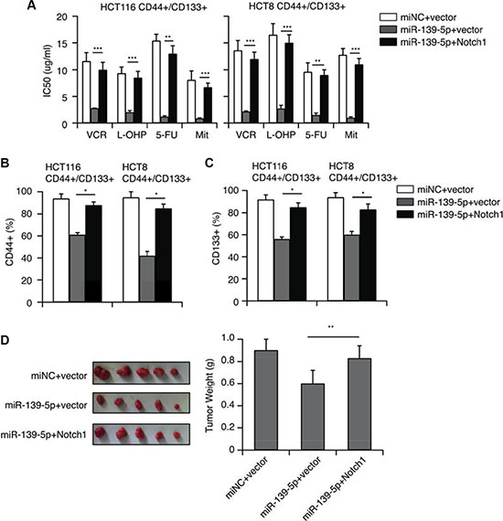 NOTCH1 restoration counteracts the inhibitory effects of miR-139-5p in CD44+/CD133+ cells.
