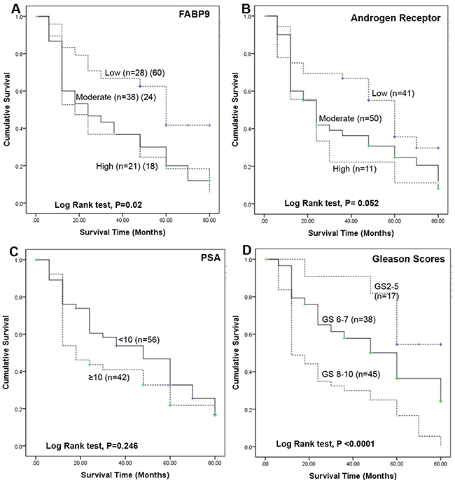 Kaplan-Meier survival curves of patients with prostate cancer.