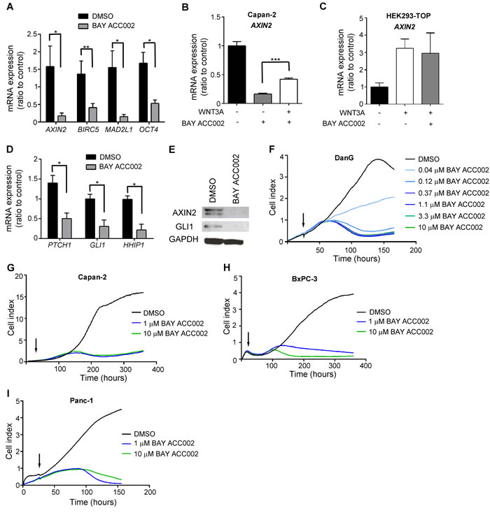 ACC Inhibition Decreases WNT and HH Signaling, and Reduces Proliferation in Pancreatic Cancer Cells