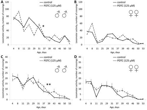 Effect of PDTC (125 µМ) on locomotor activity Drosophila melanogaster.