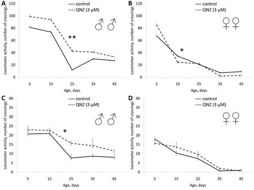Effect of QNZ (3 µМ) on locomotor activity Drosophila melanogaster.