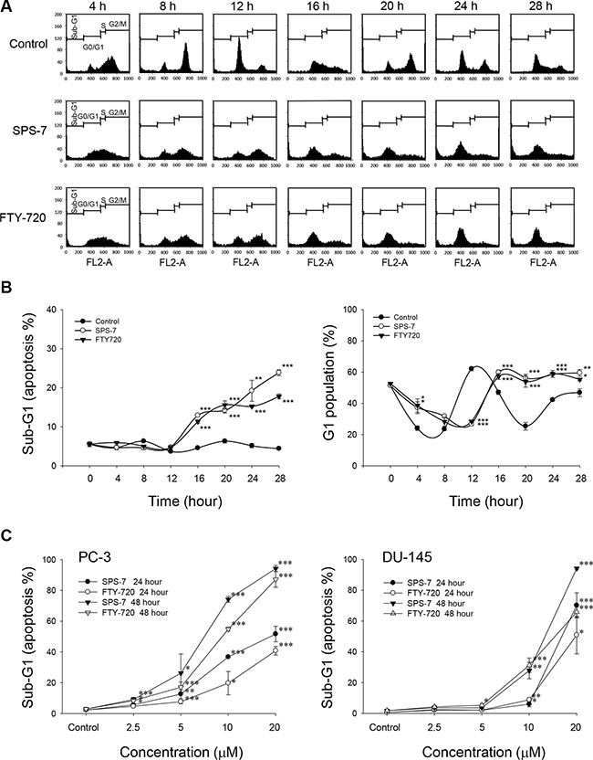 SPS-7 induces G1 arrest of the cell cycle and apoptosis.