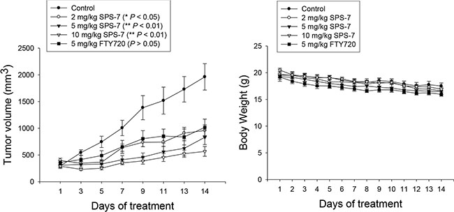 SPS-7 induces in vivo anti-tumor effect.