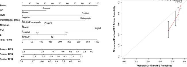 Nomogram for predicting RFS of UCB patients after RC.