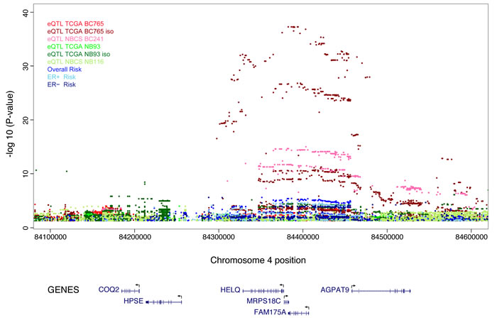 Manhattan plots of association for the eQTL results at the 4q21 locus in normal breast and breast cancer tissue.