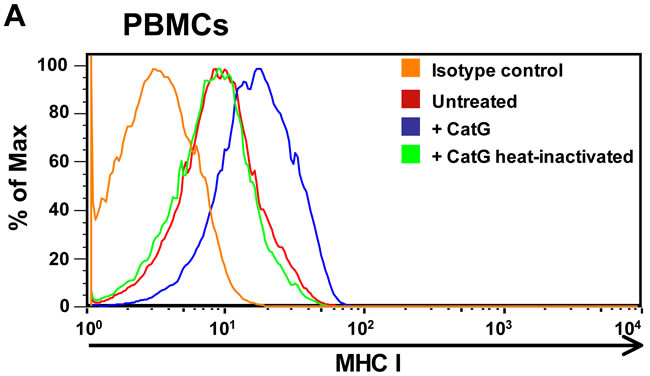 Analysis of cell surface expression of MHC I molecules.
