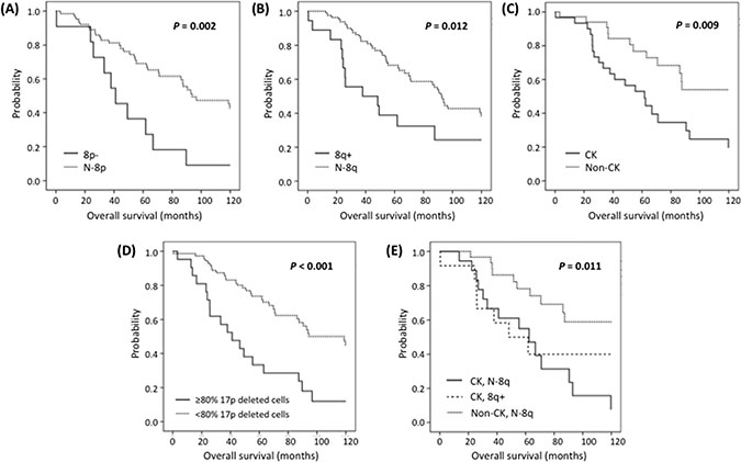 Kaplan-Meier plots for ten-year OS in patients carrying (A) 8p−, (B) 8q+, (C) CK, (D) ≥80% 17p deleted cells and (E) CK with 8q+ or N-8q.