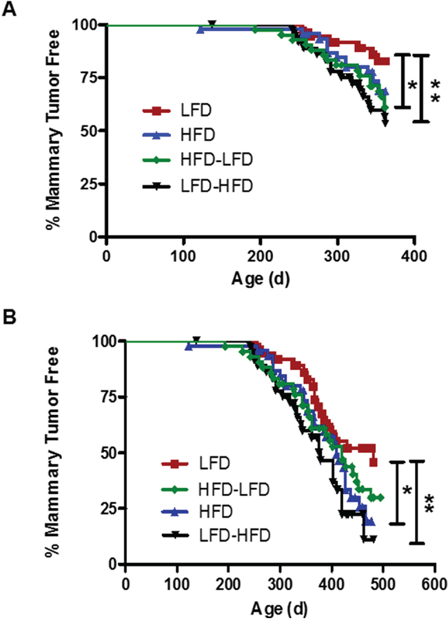 The effect of the various dietary regimens on the number of tumor-free mammary glands over time.