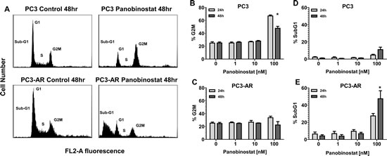 PC3 and PC3-AR cells were treated with increasing concentrations of panobinostat for 24 and 48 hours.