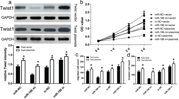 Twist1 overexpression reversed the inhibitory effect of miR-186 on HGC-27 cell proliferation, migration and invasion.