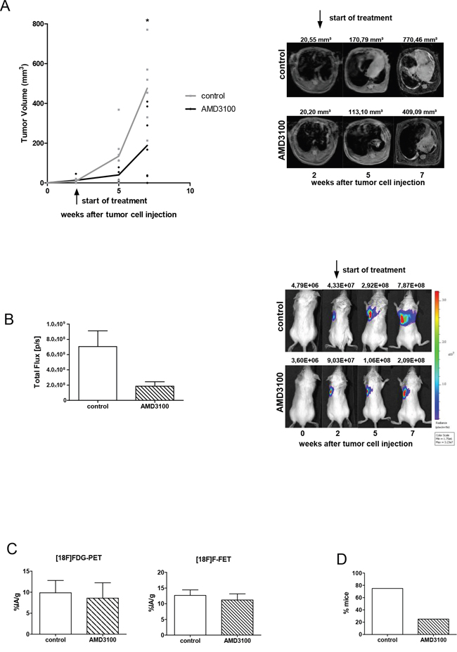 AMD3100 reduces the growth of the primary tumor and metastasis formation.