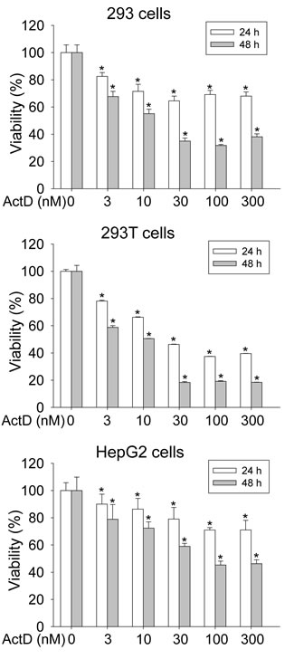 Influence on cell viability by actinomycin D (ActD).