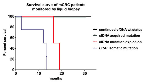 Kaplan-Meir survival curve of patients separated by somatic and cfDNA mutation status.