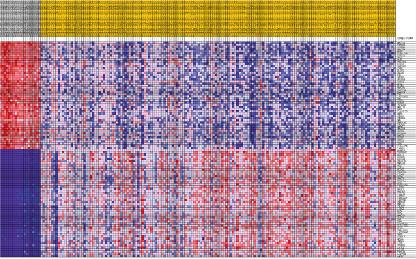 Heatmap of 50 marker genes for ADAM10 lumA phenotypes.