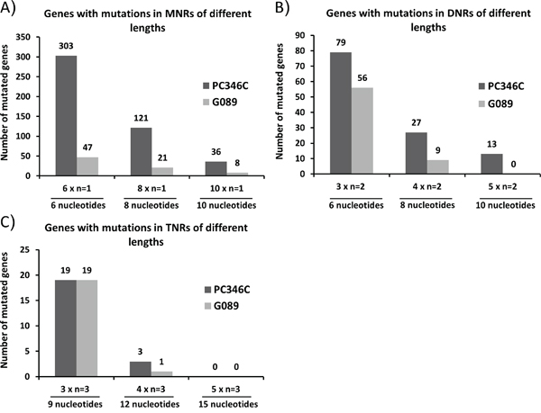 Overview of the mutation spectrum in G089 and PC346C genomic DNA.