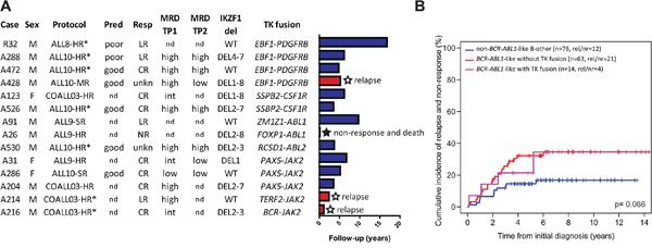 BCR-ABL1-like tyrosine kinase fusion cases.