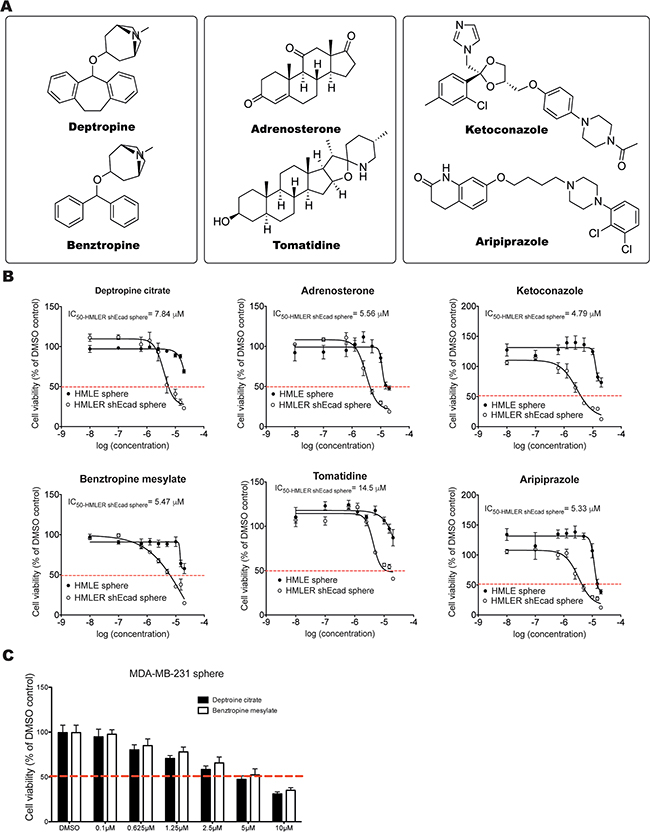 Identification and validation of compounds that exhibit selective inhibitory effects on HMLER-shEcad spheres.