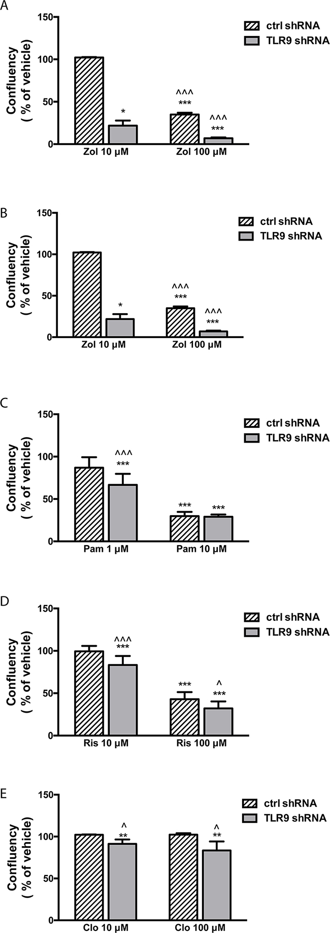 TLR9 shRNA MDA-MB-231 cells are more sensitive to the growth inhibitory effects of bisphosphonates than the corresponding control shRNA cells.