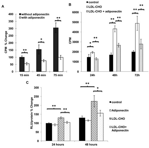 Adiponectin inhibited the uptake of cholesterol and LDL-cholesterol induced cell proliferation as well as β-catenin activity in breast cancer cells.